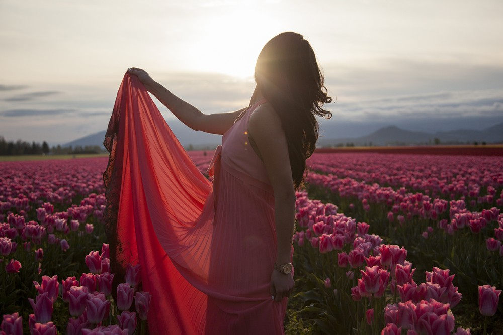 Dream destination tulip field